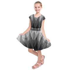 Feather Graphic Design Background Kids  Short Sleeve Dress