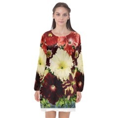 Flowers 1776585 1920 Long Sleeve Chiffon Shift Dress  by vintage2030