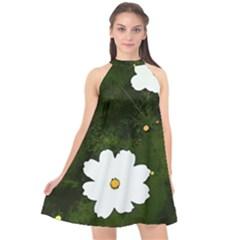 Daisies In Green Halter Neckline Chiffon Dress  by DeneWestUK