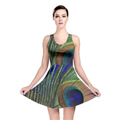 Peacock Feather Macro Peacock Bird Reversible Skater Dress by Simbadda