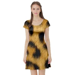 Animal Print Leopard Short Sleeve Skater Dress by NSGLOBALDESIGNS2