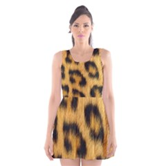 Animal Print Scoop Neck Skater Dress by NSGLOBALDESIGNS2