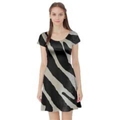 Zebra Print Short Sleeve Skater Dress by NSGLOBALDESIGNS2