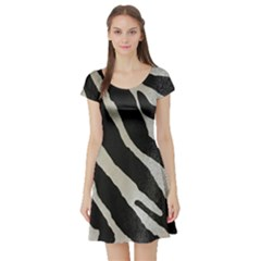 Zebra 2 Print Short Sleeve Skater Dress by NSGLOBALDESIGNS2