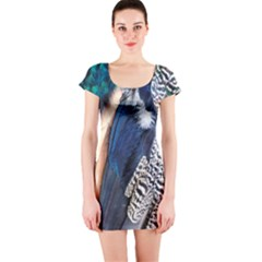 Patchwork Feathers Short Sleeve Bodycon Dress by chihuahuadresses