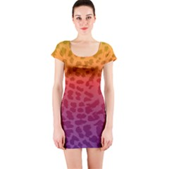 Rainbow Leopard Print Short Sleeve Bodycon Dress by chihuahuadresses