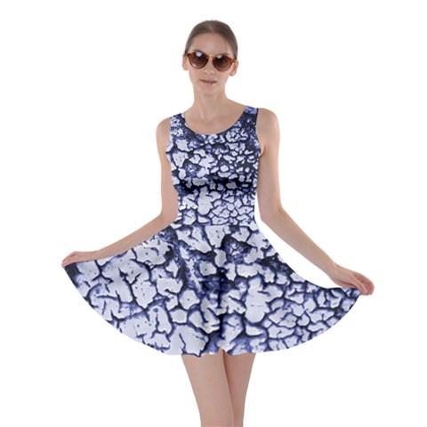Crackle Skater Dress