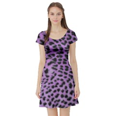 Purple Leopard Print Short Sleeve Skater Dress by chihuahuadresses
