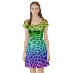 Rainbow Leopard Print Short Sleeve Skater Dress by chihuahuadresses