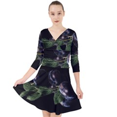 Plums Photo Art Fractalius Fruit Quarter Sleeve Front Wrap Dress by Sapixe