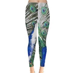 Animal Photography Peacock Bird Leggings  by Jojostore