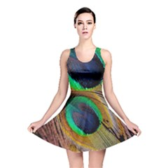 Bird Feather Background Nature Reversible Skater Dress by Sapixe