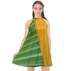 Pattern Colorful Palm Leaves Halter Neckline Chiffon Dress