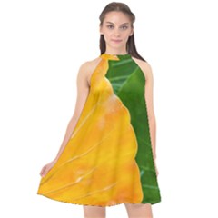 Wet Yellow And Green Leaves Abstract Pattern Halter Neckline Chiffon Dress  by Jojostore