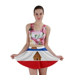 Flag Of Southern Nations, Nationalities, And Peoples  Region Of Ethiopia Mini Skirt by abbeyz71