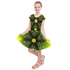 Christmas Flower Nature Plant Kids  Short Sleeve Dress by Sapixe