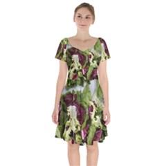 Salad Lettuce Vegetable Short Sleeve Bardot Dress by Sapixe