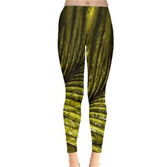 Feather Macro Bird Plumage Nature Leggings  by Sapixe