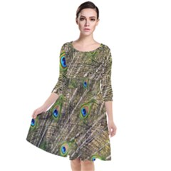 Peacock Feathers Color Plumage Green Quarter Sleeve Waist Band Dress by Sapixe