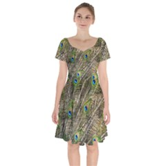 Peacock Feathers Color Plumage Green Short Sleeve Bardot Dress by Sapixe