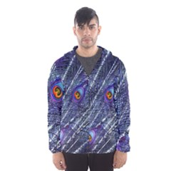 Peacock Feathers Color Plumage Blue Hooded Windbreaker (men) by Sapixe