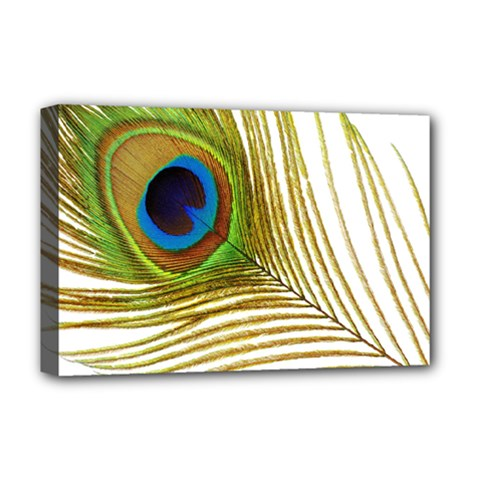 Peacock Feather Plumage Colorful Deluxe Canvas 18  X 12  (stretched)