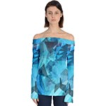 Song Sung Blue Off Shoulder Long Sleeve Top