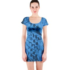 Blue Bird Short Sleeve Bodycon Dress by chihuahuadresses