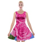 Roses Collections Velvet Skater Dress