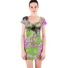 Hot Pink Succulent Sedum With Fleshy Green Leaves Short Sleeve Bodycon Dress by myrubiogarden