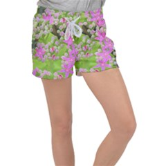 Hot Pink Succulent Sedum With Fleshy Green Leaves Women s Velour Lounge Shorts by myrubiogarden