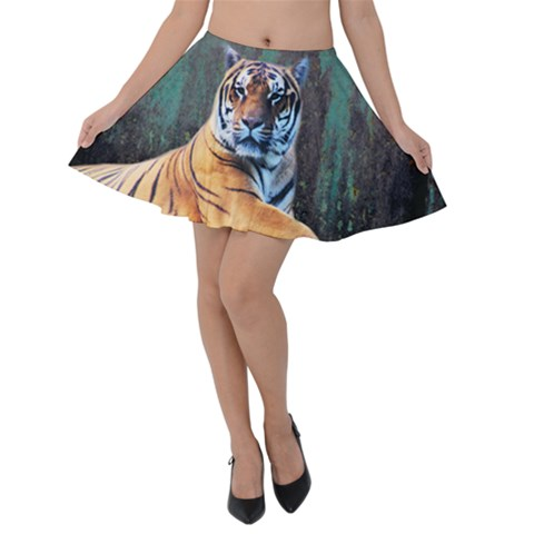 Tiger Animal Print Velvet Skater Skirt