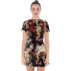 Ara Bird Parrot Animal Art Drop Hem Mini Chiffon Dress