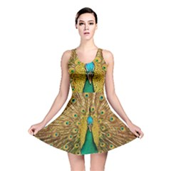Peacock Feather Bird Peafowl Reversible Skater Dress by Wegoenart