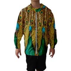 Peacock Feather Bird Peafowl Hooded Windbreaker (kids) by Wegoenart