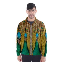 Peacock Feather Bird Peafowl Windbreaker (men) by Wegoenart