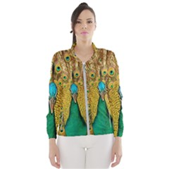 Peacock Feather Bird Peafowl Windbreaker (women) by Wegoenart