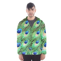 Peacock Feathers Peafowl Hooded Windbreaker (men) by Wegoenart