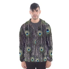 Background Peacock Feathers Hooded Windbreaker (men) by Wegoenart