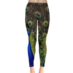 Peacock Bird Plumage Display Full Leggings  by Wegoenart