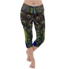 Peacock Bird Plumage Display Full Lightweight Velour Capri Yoga Leggings by Wegoenart