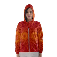 Background Rays Sun Hooded Windbreaker (women)