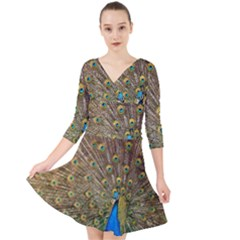 Peacock Plumage Bird Peafowl Quarter Sleeve Front Wrap Dress by Wegoenart