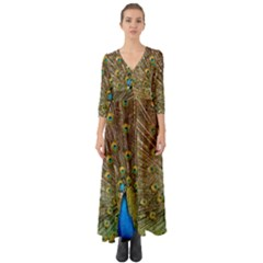 Peacock Plumage Bird Peafowl Button Up Boho Maxi Dress by Wegoenart