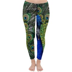 Peacock Close Up Plumage Bird Head Classic Winter Leggings by Wegoenart