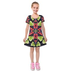 Pattern Berry Red Currant Plant Kids  Short Sleeve Velvet Dress