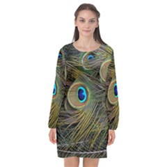 Peacock Tail Feathers Close Up Long Sleeve Chiffon Shift Dress