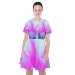 Abstract Pink Hibiscus Bloom With Flower Power Sailor Dress by myrubiogarden