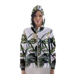Botanical Illustration Palm Leaf Hooded Windbreaker (women) by Mariart