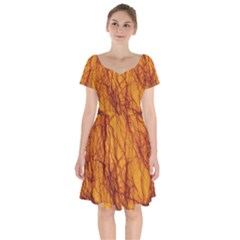 Lightning Internal Blood Vessel Short Sleeve Bardot Dress